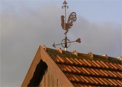Wetterhahn (1)