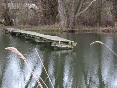 Steg im Teich
