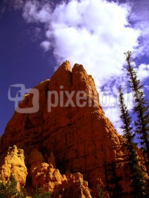Red Rock Loose Canyon