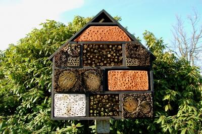 Niströhren für Wildbienen