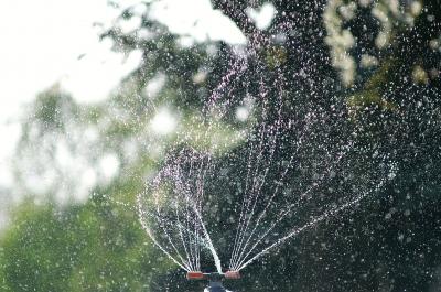Rasensprenger mit Wassertropfen