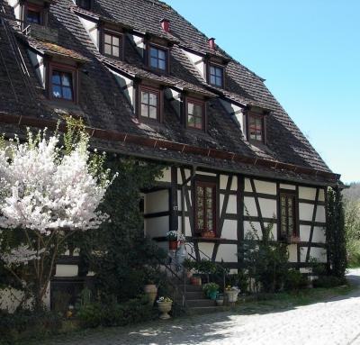 Teilansicht Schloss/Kloster Bebenhausen 1