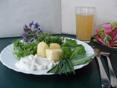 Essen in Hessen - Grüne Soße 1.0