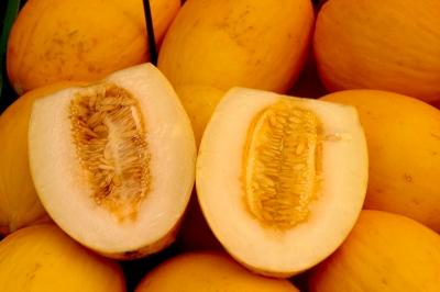 bucurescu 0155 melonen