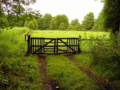 Das Tor zur Weide