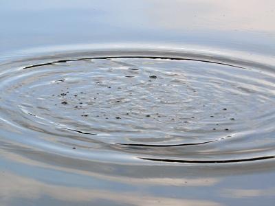 Alter Teich
