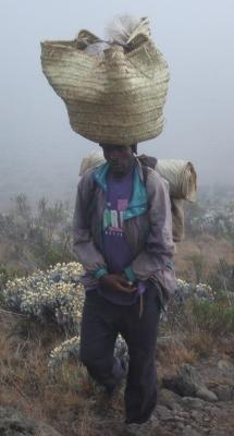 Träger im Nebel am Kilimanjaro