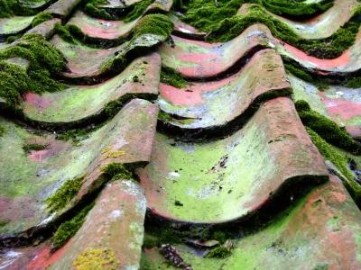 Antike Dachpfannen - Detailsicht