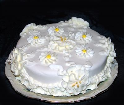 Meine 1. Icing Torte