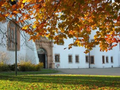 Herbstzauber im Schlosspark Celle