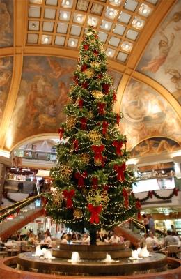 Weihnachten in Buenos Aires