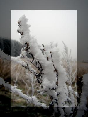 * Väterchen Frost *