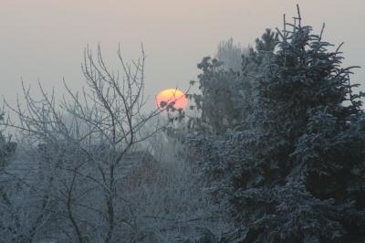 Frostiger Morgen - 2