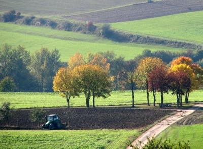 Ackerbau im Herbst