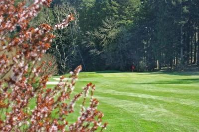 Golf im Frühling