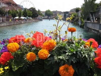Sommer in Thun
