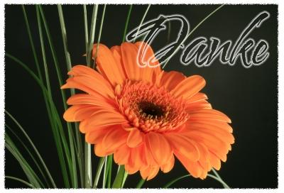Blumen-Danke