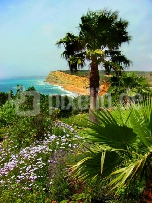 Algarve-Steilküste