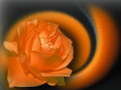 Komposition in Orange