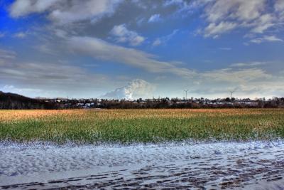 Blick auf die Broicher Siedlung