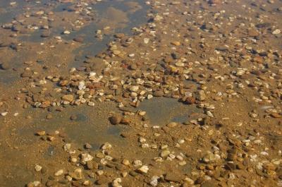 Textur Kieselsteine im Wasser #2