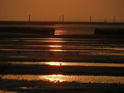 Ebbe bei Sonnenuntergang in Bensersiel