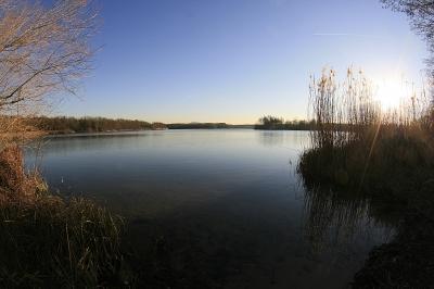 Schwanensee-Tag