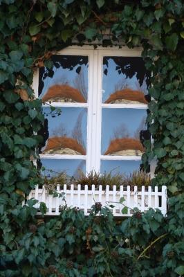 Spiegelung im Butzenfenster