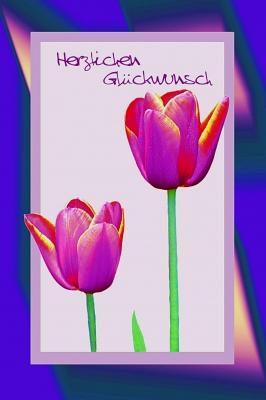 Tulpen-Glückwunsch