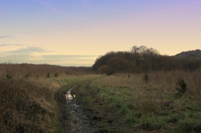 Weg durchs Moor