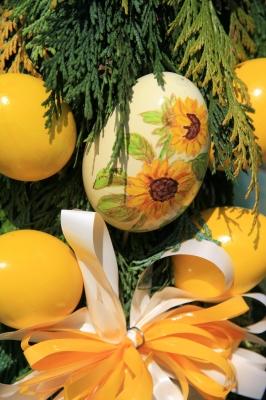 Eier in gelb