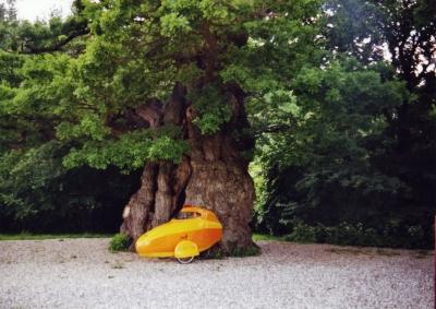 Baum- und umweltfreundlich