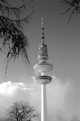 Himmel,Bäume,Fernsehturm - 2 sw