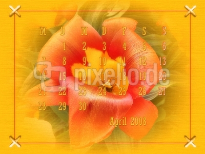 Desktopkalender April2008