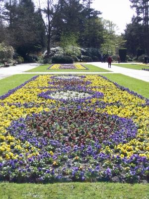 Bunter Garten im März 2