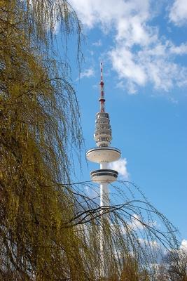 Himmel,Bäume,Fernsehturm - 9