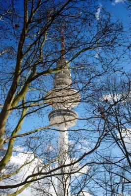 Himmel,Bäume,Fernsehturm - 8