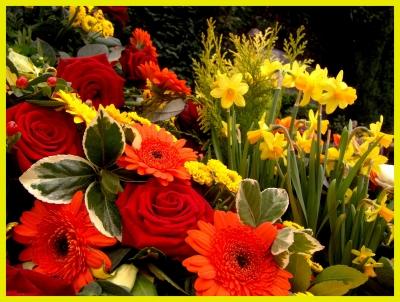 Rosen & Blumen