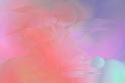 Hintergrund - Pastell 4