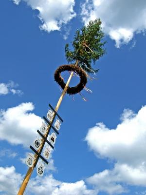 Zunftbaum im Mai