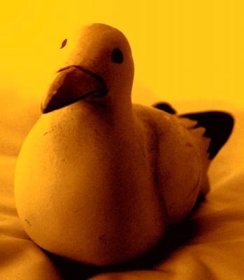 ich bin keine Ente