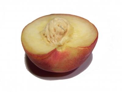 Pfirsich 3