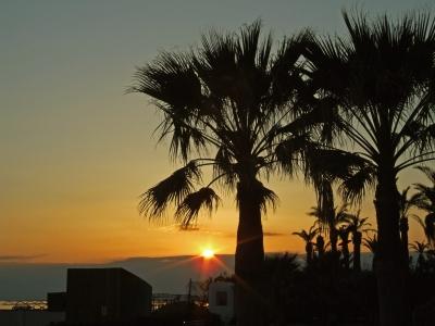 Sonne Palmen und Meer