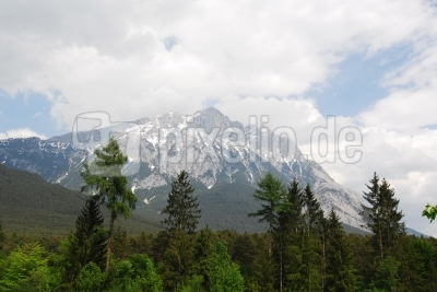 Wilder Mieming in Tirol