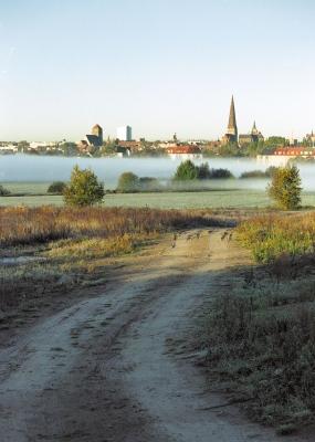 Morgennebel an der Oberwarnow (2)
