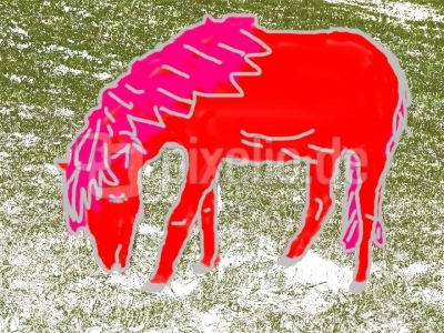 das rote Pferd