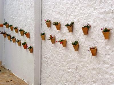 Mauer mit Blumentöpfen