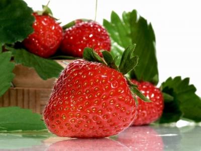 Strawberries (nur redaktionelle Nutzung)