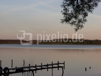 Feisneck am Müritz Nationalpark