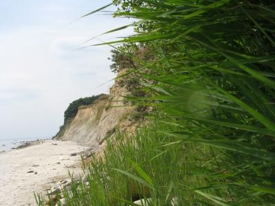 Steilküste bei Grömitz ( Ostsee)